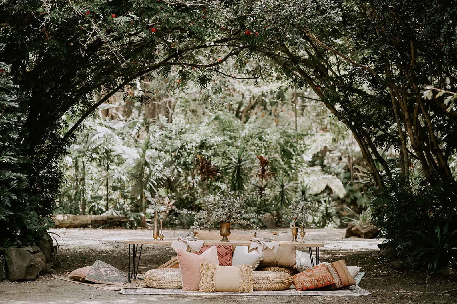 Katie Walcott Doe and Deer Photography Sol Gardens 1