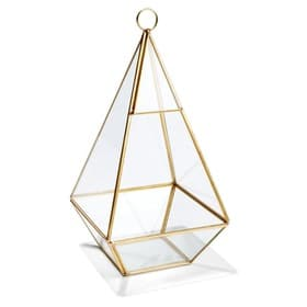 lantern gold triangle