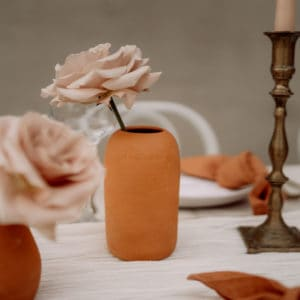 Styled Images June 2021 Artic Fox 54